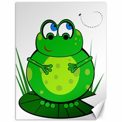 Green Frog Canvas 12  X 16   by Valentinaart