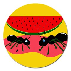 Ants And Watermelon  Magnet 5  (round) by Valentinaart