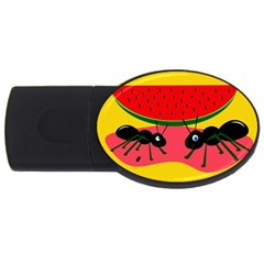 Ants And Watermelon  Usb Flash Drive Oval (4 Gb)  by Valentinaart