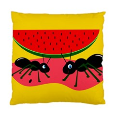 Ants And Watermelon  Standard Cushion Case (two Sides) by Valentinaart