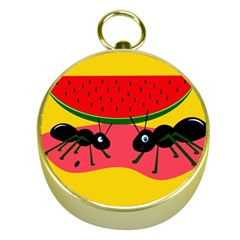 Ants And Watermelon  Gold Compasses by Valentinaart