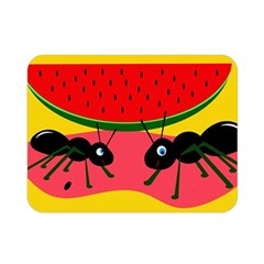 Ants And Watermelon  Double Sided Flano Blanket (mini)  by Valentinaart