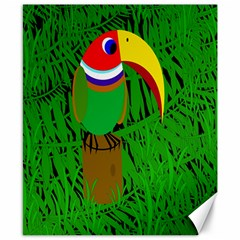 Toucan Canvas 8  X 10  by Valentinaart