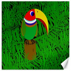 Toucan Canvas 20  X 20   by Valentinaart
