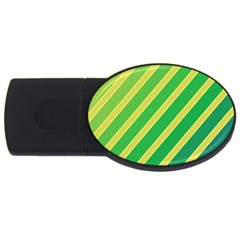 Green And Yellow Lines Usb Flash Drive Oval (4 Gb)  by Valentinaart