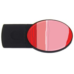Red And Pink Lines Usb Flash Drive Oval (2 Gb)  by Valentinaart