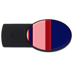 Pink And Blue Lines Usb Flash Drive Oval (2 Gb)  by Valentinaart