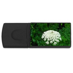 Beetle And Flower Usb Flash Drive Rectangular (4 Gb)  by randolpheckel