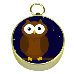 Cute Owl Gold Compasses