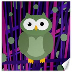 Green And Purple Owl Canvas 16  X 16   by Valentinaart