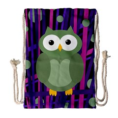 Green And Purple Owl Drawstring Bag (large) by Valentinaart