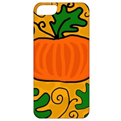Thanksgiving Pumpkin Apple Iphone 5 Classic Hardshell Case by Valentinaart