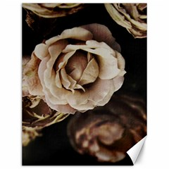 Roses Flowers Canvas 12  X 16