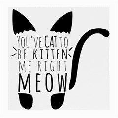 You ve Cat To Be Kitten Me Right Meow Medium Glasses Cloth (2 Side) by TanyaDraws
