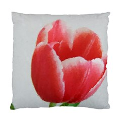 Red Tulip Watercolor Painting Standard Cushion Case (two Sides) by picsaspassion