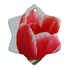 Red Tulip Watercolor Painting Snowflake Ornament (2 Side) by picsaspassion