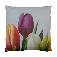 Tulips Standard Cushion Case (two Sides) by picsaspassion