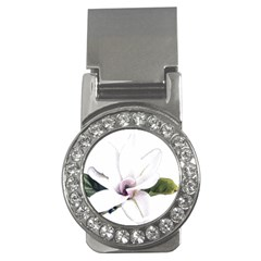 White Magnolia Pencil Drawing Art Money Clips (cz)