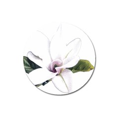 White Magnolia Pencil Drawing Art Magnet 3  (round)