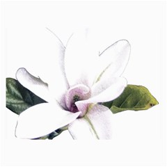 White Magnolia Pencil Drawing Art Collage Prints by picsaspassion