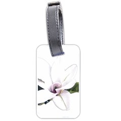 White Magnolia Pencil Drawing Art Luggage Tags (one Side)  by picsaspassion