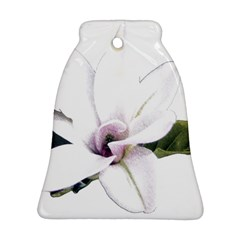 White Magnolia Pencil Drawing Art Ornament (bell)  by picsaspassion