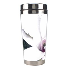 White Magnolia Pencil Drawing Art Stainless Steel Travel Tumblers