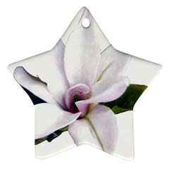 Magnolia Wit Aquarel Painting Art Ornament (star)  by picsaspassion