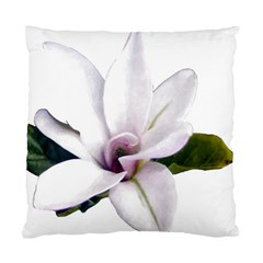Magnolia Wit Aquarel Painting Art Standard Cushion Case (one Side) by picsaspassion