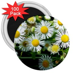 White Summer Flowers Oil Painting Art 3  Magnets (100 Pack) by picsaspassion