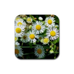 White Summer Flowers Oil Painting Art Rubber Coaster (square)  by picsaspassion