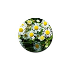 White Summer Flowers Oil Painting Art Golf Ball Marker (4 Pack) by picsaspassion