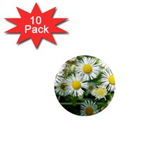 White Summer Flowers Watercolor Painting Art 1  Mini Magnet (10 Pack)  by picsaspassion