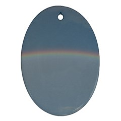 Colorful Rainbow Ornament (oval)  by picsaspassion