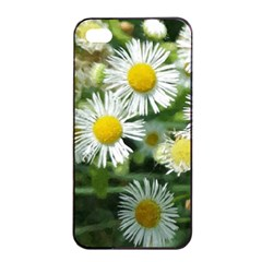 White Summer Flowers, Watercolor Painting Apple Iphone 4/4s Seamless Case (black) by picsaspassion