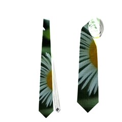 White Summer Flowers Oil Painting Art Neckties (one Side)