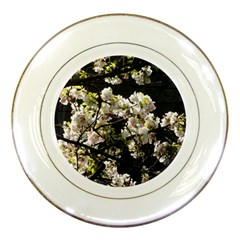 Japanese Cherry Blossom Porcelain Plates by picsaspassion