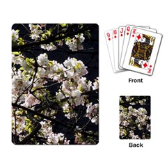 Japanese Cherry Blossom Playing Card by picsaspassion