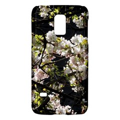 Japanese Cherry Blossom Galaxy S5 Mini by picsaspassion