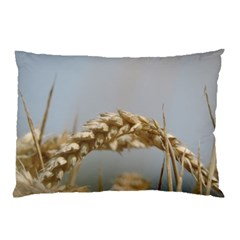 Cornfield Pillow Case (two Sides) by picsaspassion