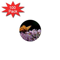 Butterfly Sitting On Flowers 1  Mini Buttons (100 Pack)  by picsaspassion