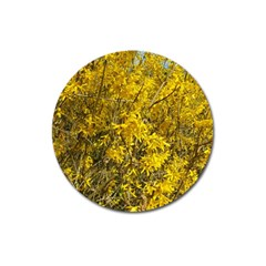 Nature, Yellow Orange Tree Photography Magnet 3  (round) by yoursparklingshop