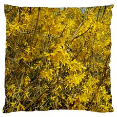 Nature, Yellow Orange Tree Photography Large Cushion Case (one Side) by yoursparklingshop