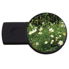 Wild Daisy Summer Flowers Usb Flash Drive Round (2 Gb)  by picsaspassion