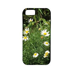 Wild Daisy Summer Flowers Apple Iphone 5 Classic Hardshell Case (pc+silicone) by picsaspassion