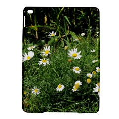 Wild Daisy Summer Flowers Ipad Air 2 Hardshell Cases by picsaspassion