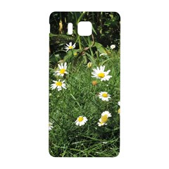 Wild Daisy Summer Flowers Samsung Galaxy Alpha Hardshell Back Case by picsaspassion