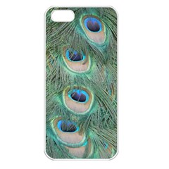 Peacock Feathers Macro Apple Iphone 5 Seamless Case (white) by GiftsbyNature