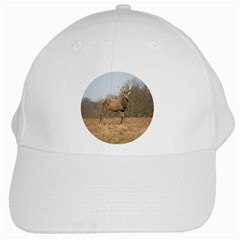 Red Deer Stag On A Hill White Cap by GiftsbyNature