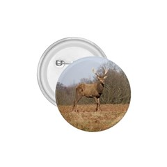 Red Deer Stag On A Hill 1 75  Buttons by GiftsbyNature